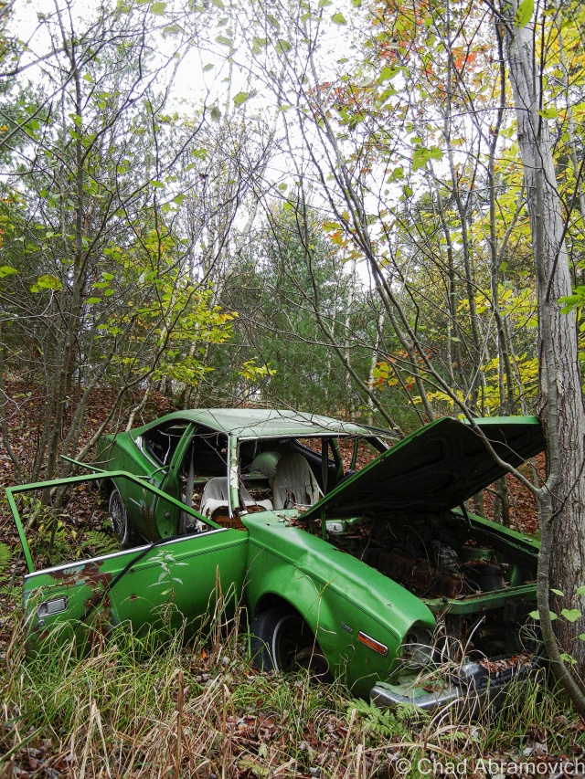 Milton – this fading green AMC Hornet lies on a steep bank behind a rural stretch of railroad tracks, on the edge of a patch of thick swampland. it looks as if someone pushed (or quite possibly drove) the car down the hill, where it lays to rest.