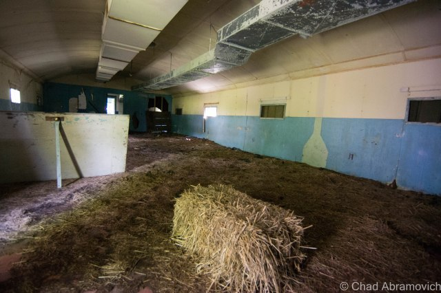 This Quonset Hut had a few hay bails in it - the floors covered with matted hay and animal feces, like someone had been keeping an animal here recently...