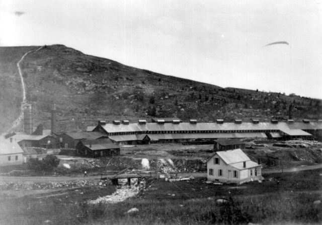 "The ore was mined from adits that went deep into the mountains. It was roasted for 2-3 months in beds, giving off sulfur fumes, and was then taken to the smelters, huge furnaces lined with brick. A chimney flue ran up the side of the hill to take away the worst of the smelter emissions, but not far away. A contemporary description says that ""the country around the village is ... completely destitute of vegetation....For some distance around, all vegetable growth is sparse and stunted. And pervading everything is a most beastly odor from the roasting beds."" (To this day, a century after the mine was closed, nothing grows around the smelter site.)